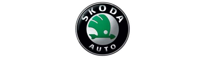 Navigatie Skoda | Navigatie Dedicata Skoda