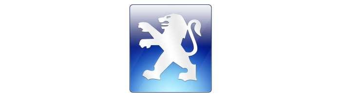 Navigatie dedicata Peugeot, dvd auto Peugeot