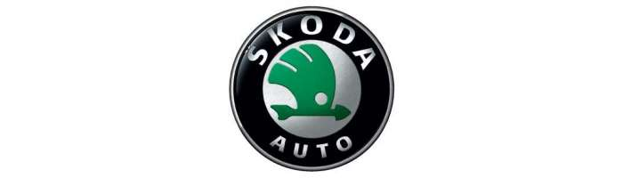 Interfata video camera marsarier parcare Skoda